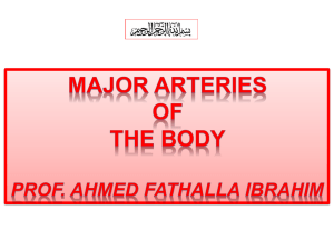 2-MAJOR ARTERIES OF BODY-PROF AHMED