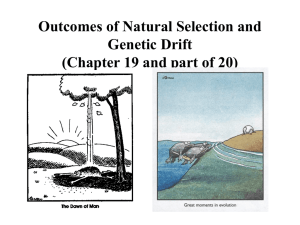 Outcomes of Natural Selection (Chapter 19)