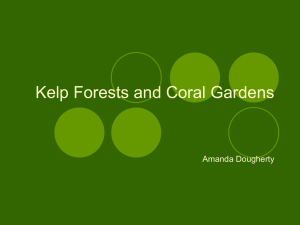 1Doughrty_Kelp Forests and Coral Gardens.pps