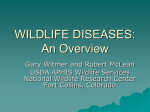 WILDLIFE DISEASES: An Overview