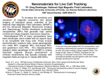 Nanomaterials for Live Cell Tracking (2006
