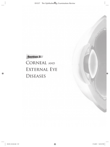 Section 3: Corneal and External Eye Diseases