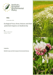 Ecological Focus Area choices and their potential impacts on