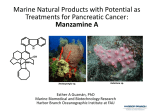 Marine Natural Products with Potential as Treatments for Pancreatic