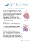 What Happens during Normal Heart Function