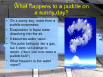What happens to a puddle on a sunny day?