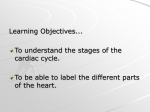 Cardiac Cycle - Kinver High School