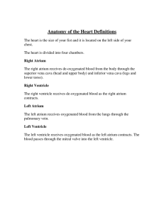 Anatomy of the Heart Definitions
