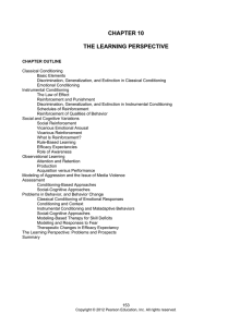 10: The Learning Perspective
