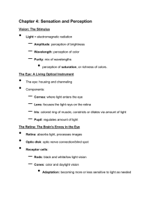 chapter 4 note sheet