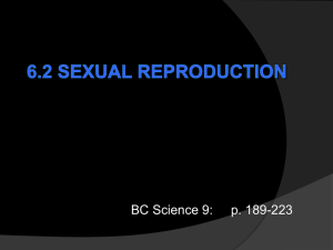 6.2 Sexual Reproduction