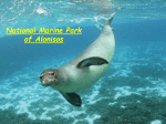 National Marine Park of Allonisos