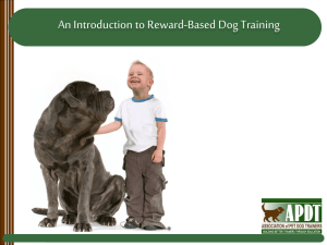 Fear Period of Socialization - National Train Your Dog Month