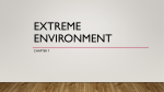 Extreme Environment - Miami Beach Senior High School