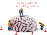 Unit 2- Methods of Studying The Brain #3