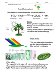 Notes Photosynthesis Light energy The two main colors that plants
