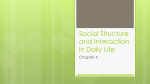 Social Structure and Interaction in Daily Life