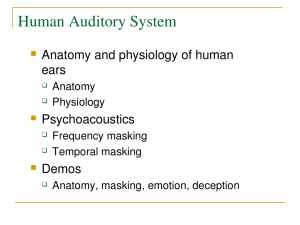 Human Auditory System
