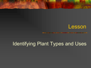Unit C 4-4: Identifying Plant Types and Uses