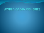 WORLD OCEAN FISHERIES