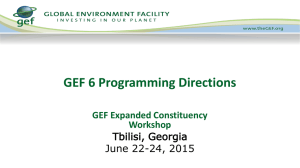GEF 6 Programming Climate Change Mitigation
