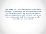 Case Study 3: A 23-year-old female comes in for an emergency