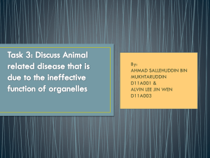 Animal related disease that is due to the