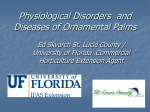 Disorders and Diseases of Ornamental Palms