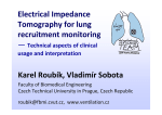 Electrical Impedance Tomography for Lung