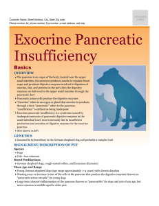 exocrine_pancreatic_insufficiency
