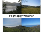 Fog/Foggy Weather