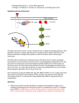 S3.Cell Signaling-Signaling and gene expression