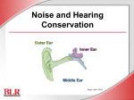 Noise and Hearing Conservation English
