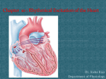 The Sinus Node as the Pacemaker of the Heart