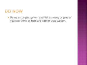Organ Systems - Montville.net