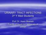 URINARY TRACT INFECTIONS (Urethritis