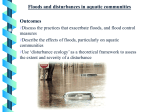 Floods and disturbances