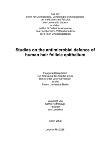 Studies on the antimicrobial defence of human hair follicle epithelium