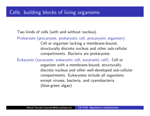 Cells: building blocks of living organisms