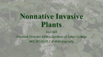 Nonnative Invasive Plants