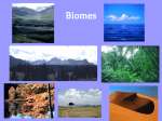 Biomes PPT