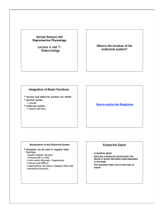 PPT slides handout as PDF 08