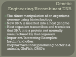 Genetic Engineering/Recombinant DNA