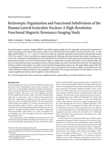 Retinotopic Organization and Functional Subdivisions of the Human