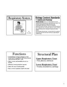 Functions Structural Plan