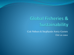 Global Fisheries