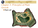 Chapter 3: Principles of Plant Growth