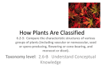 Vascular and non-vascular plants presentation
