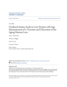 Oxidized Amino Acids in Lens Protein with Age