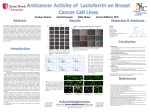 Lactoferrin and its impact on breast cancer cell lines